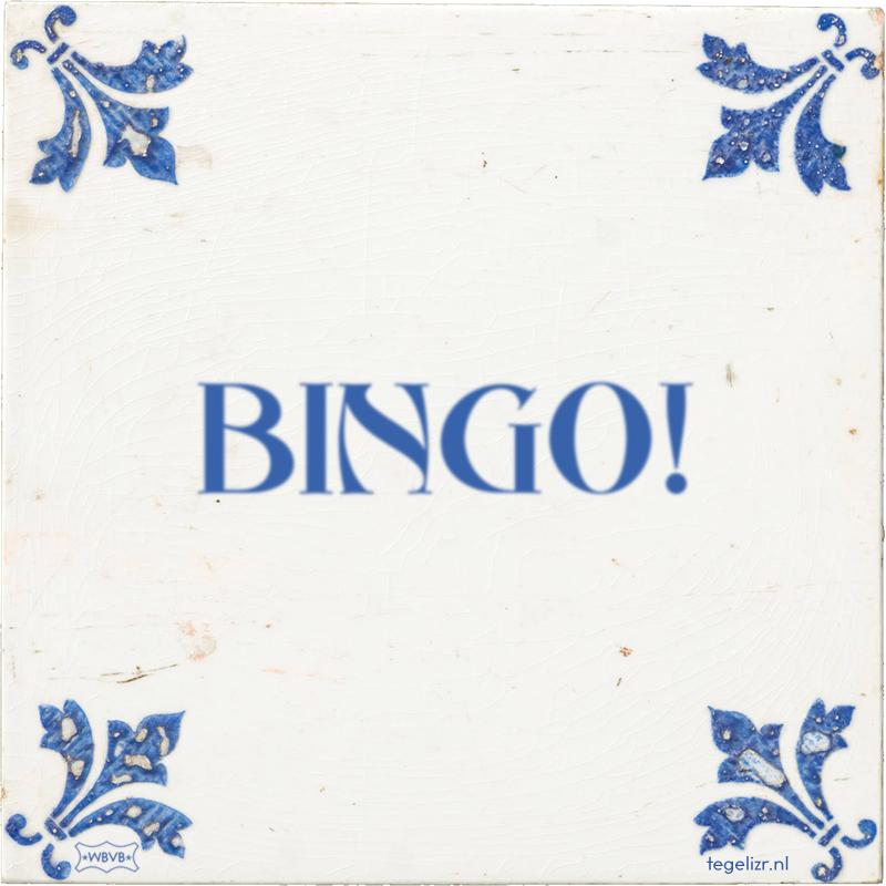 BINGO! - Online tegeltjes bakken