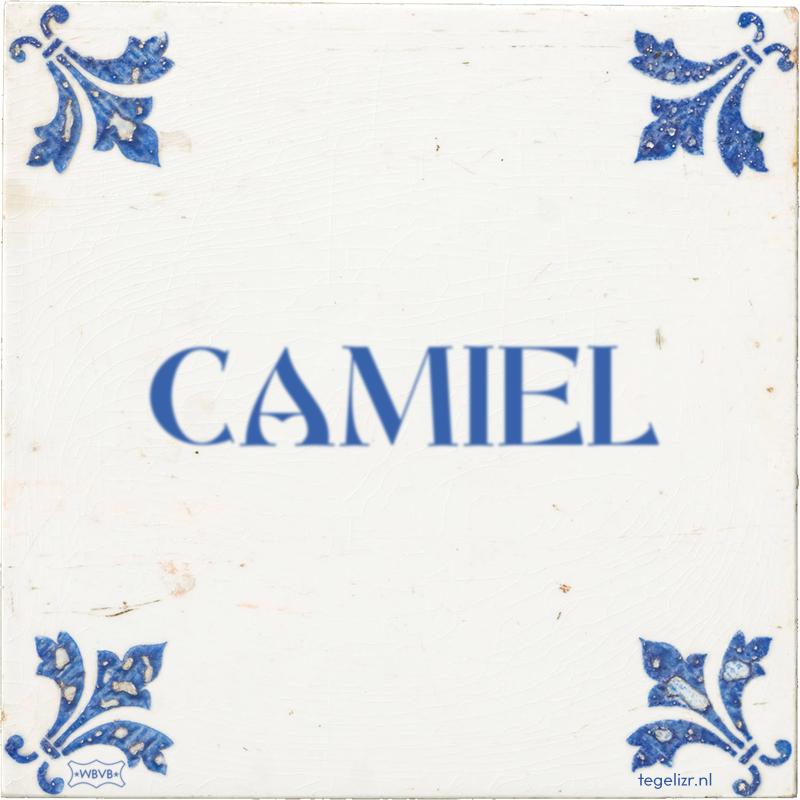 CAMIEL - Online tegeltjes bakken