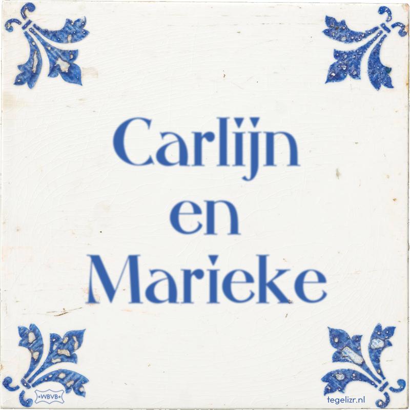 Carlijn en Marieke - Online tegeltjes bakken
