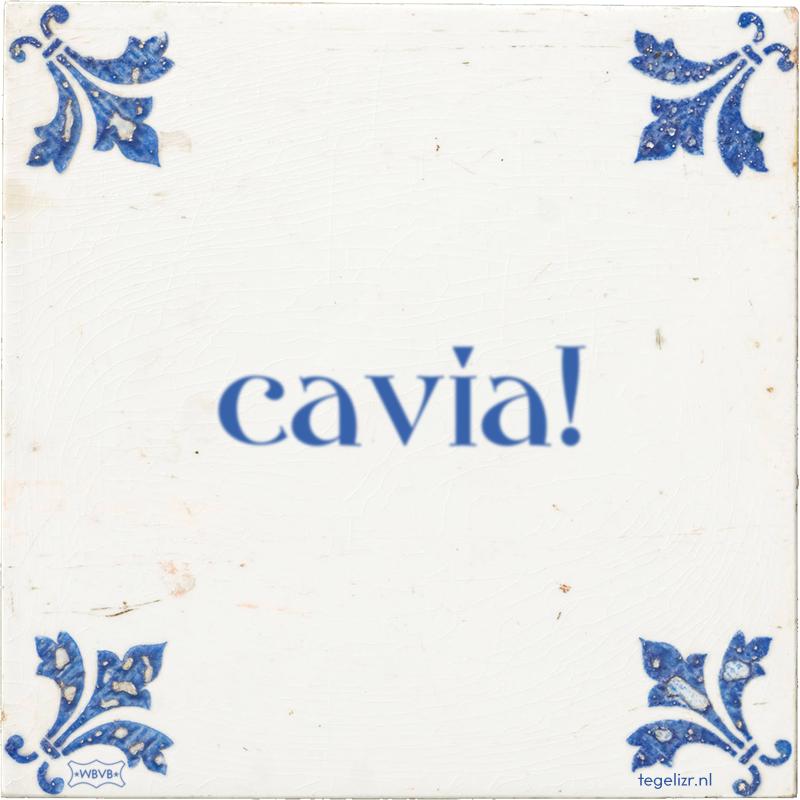 cavia! - Online tegeltjes bakken
