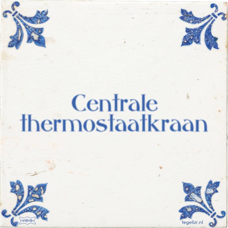 Centrale thermostaatkraan - Online tegeltjes bakken