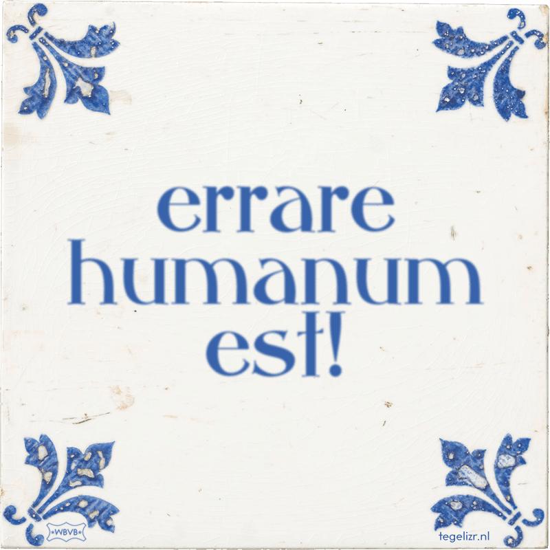 errare humanum est! - Online tegeltjes bakken