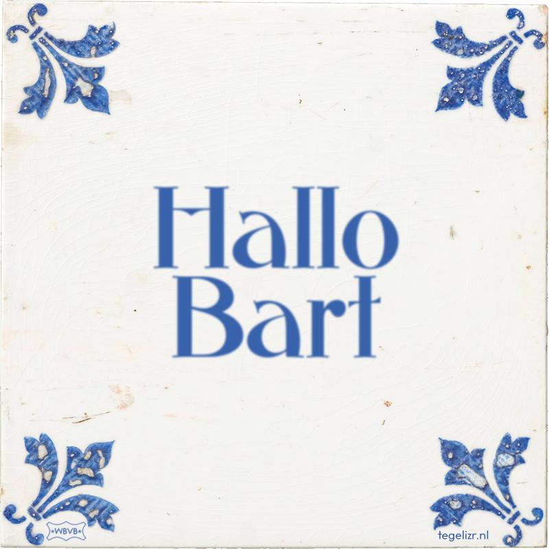 Hallo Bart - Online tegeltjes bakken