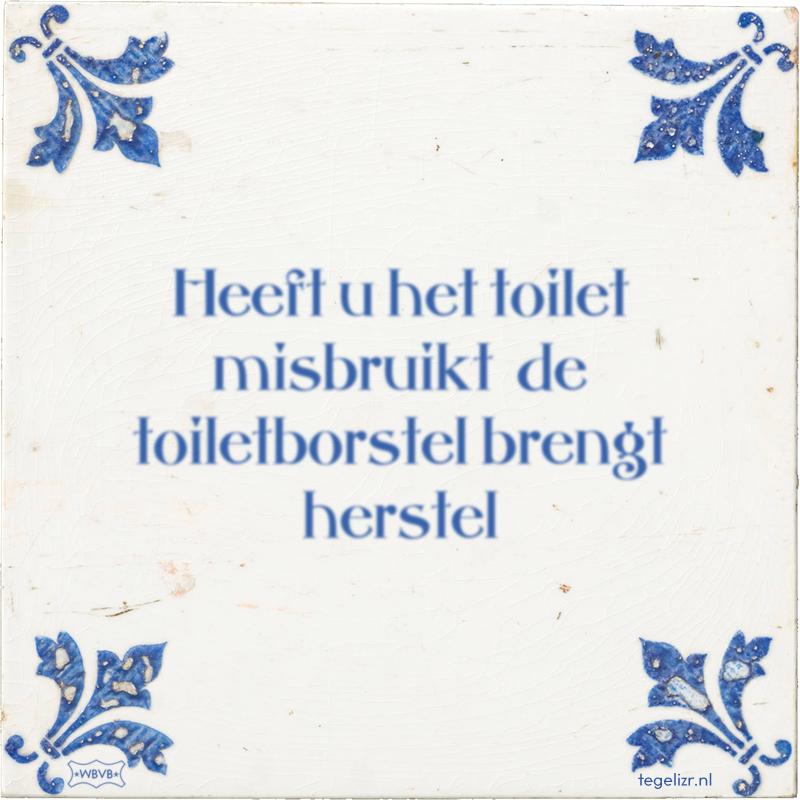 Heeft u het toilet misbruikt de toiletborstel brengt herstel - Online tegeltjes bakken