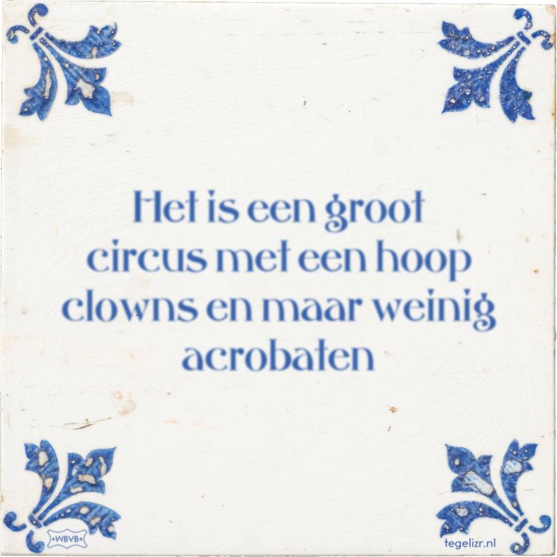 Het is een groot circus met een hoop clowns en maar weinig acrobaten - Online tegeltjes bakken